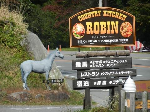 DSCN9903 ロビン