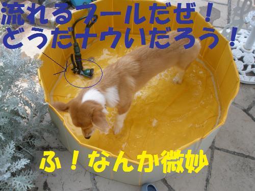 002_convert_20120729221127.jpg