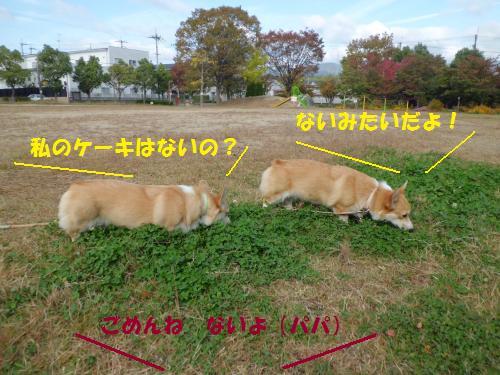 007_convert_20121110231746.jpg