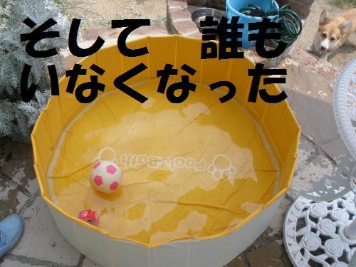 009_convert_20120729213959.jpg