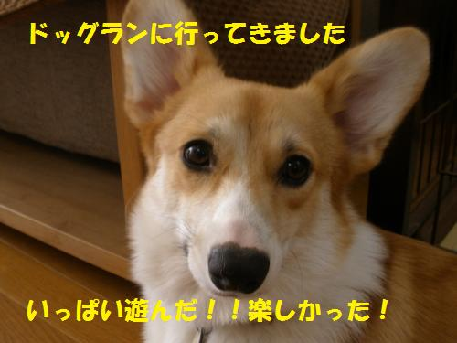 010_convert_20121014214517.jpg