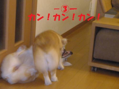 015_convert_20120923222719.jpg