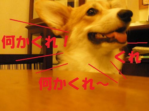 026_convert_20120918232057.jpg