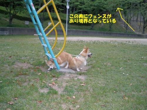 044_convert_20121211225840.jpg