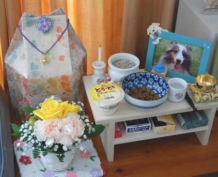 お誕生日ケーキ代わりにプリンで♪