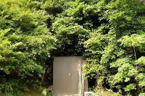 自作の保存小屋♪