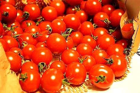 甘いミニトマト♪