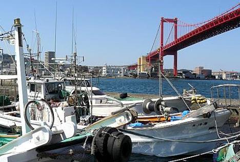 漁船がいっぱい♪