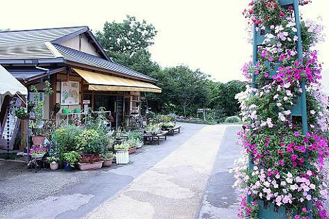 福智山麓花公園♪