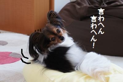 0150_20110601130338.jpg
