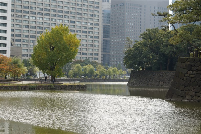 皇居とその周辺 (7)