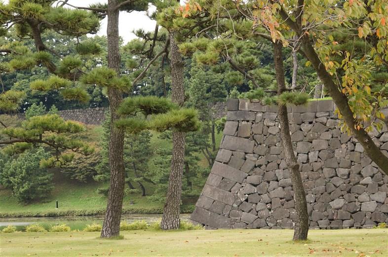 皇居とその周辺 (15)
