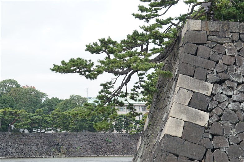 皇居とその周辺 (32)