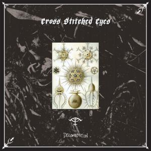 CROSS STITCHED EYES『Decomposition』