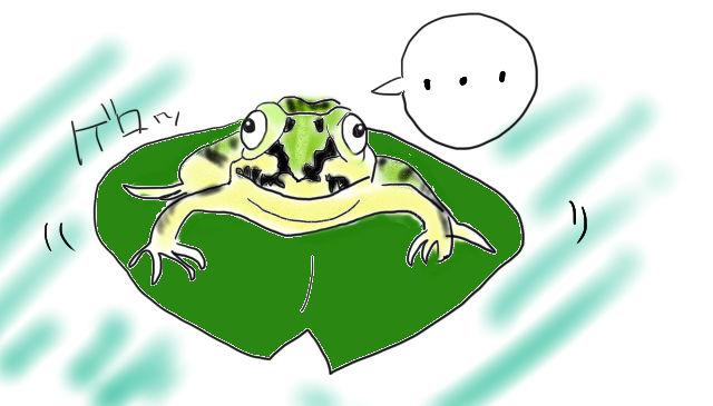 トノサマガエル2