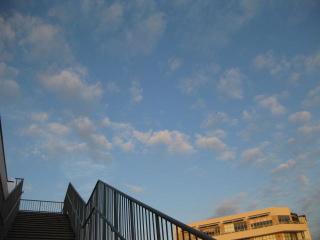 旅行先 京都 意識消失 原因 対処法 鍼灸治療 東京都葛飾区東新小岩 新小岩
