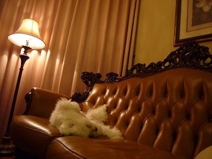 on sofa1