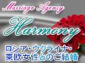 Harmony_bunner_2.jpg