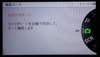 NEX5FARM1011181.jpg
