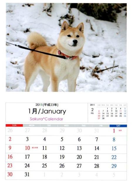 2011さくらカレンダー1月A