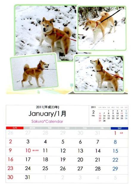 2011さくらカレンダー1月B