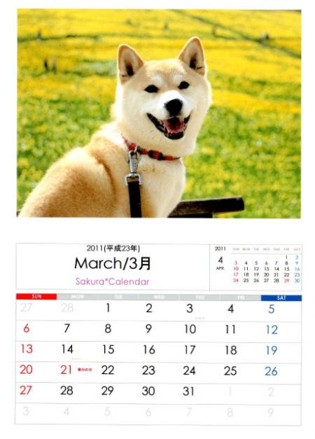 2011さくらカレンダー3月B