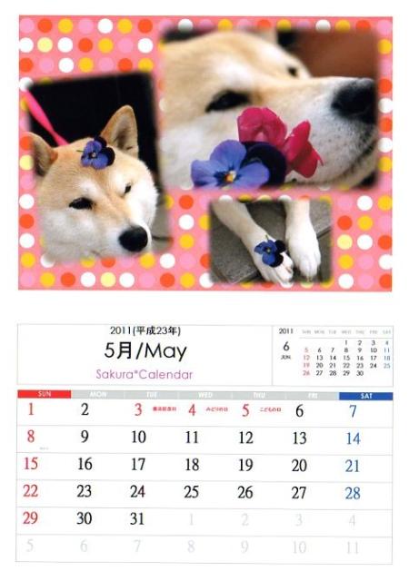 2011さくらカレンダー5月A
