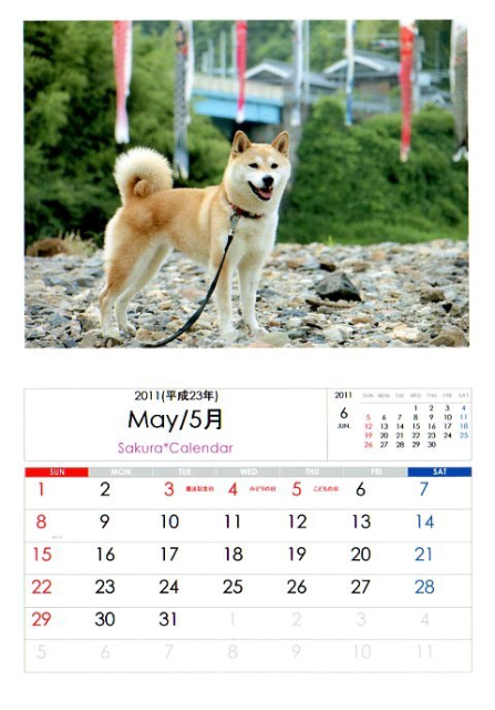 2011さくらカレンダー5月B