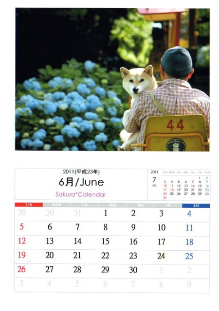 2011さくらカレンダー6月A