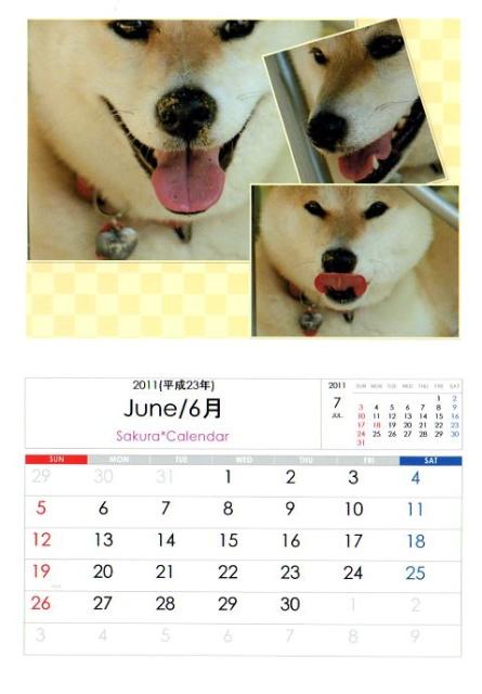 2011さくらカレンダー6月B