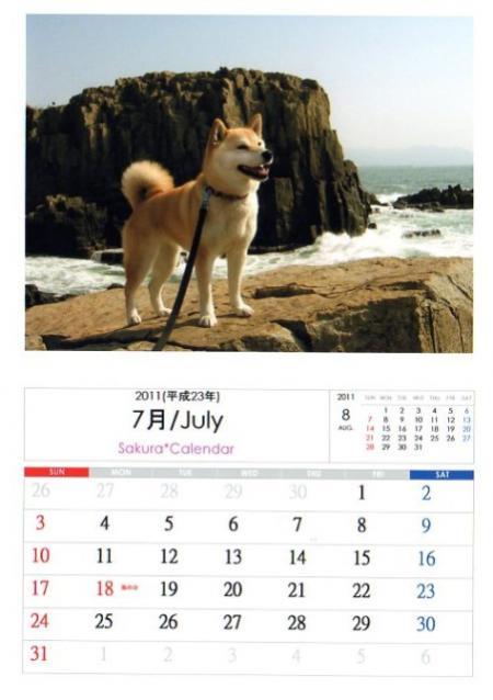 2011さくらカレンダー7月A