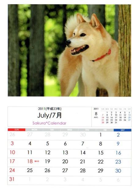 2011さくらカレンダー7月B