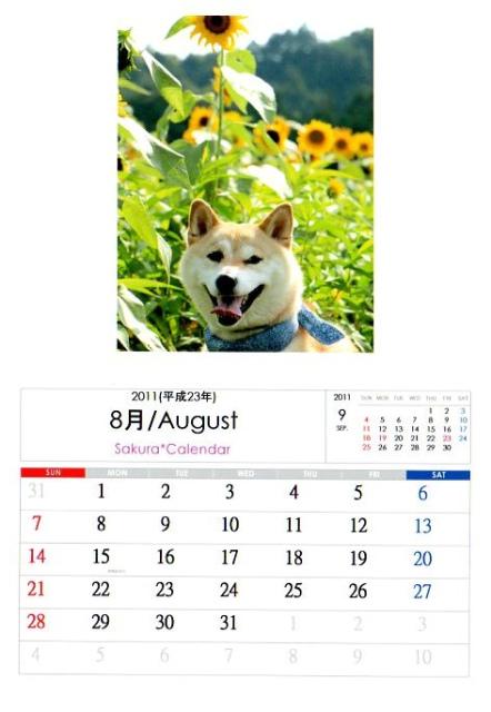 2011さくらカレンダー8月A
