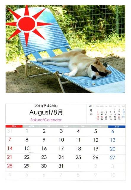 2011さくらカレンダー8月B