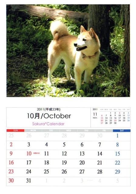 2011さくらカレンダー10月A