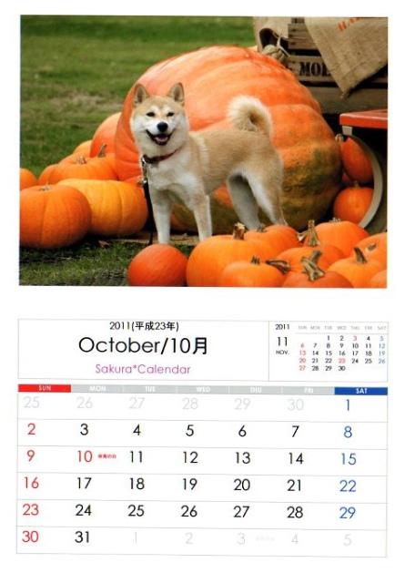 2011さくらカレンダー10月B