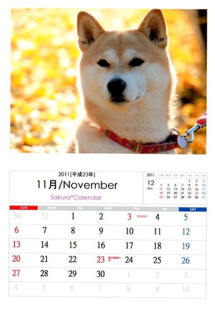 2011さくらカレンダー11月A