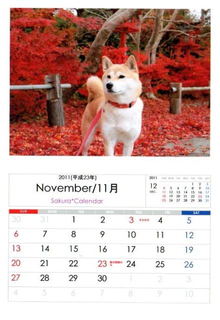 2011さくらカレンダー11月B