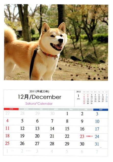 2011さくらカレンダー12月A