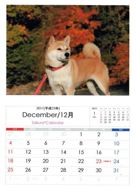 2011さくらカレンダー12月B