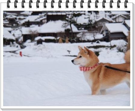 雪の中で~