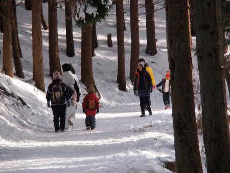 雪道を歩く~