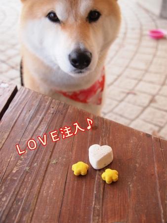 LOVE注入♪