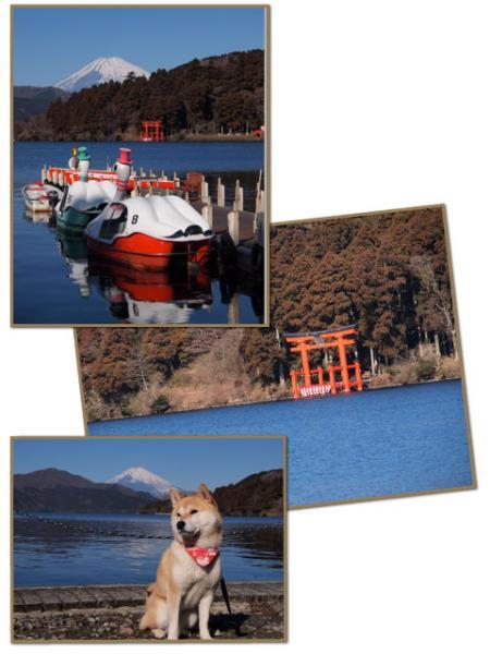 芦ノ湖にて!