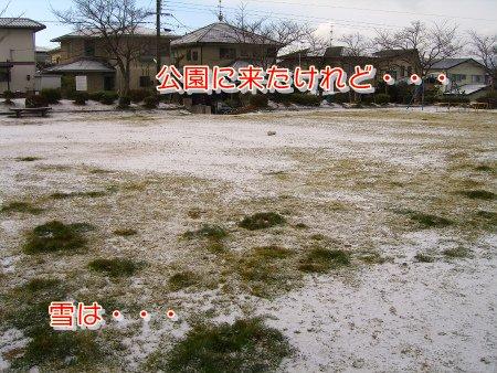 公園に雪!?