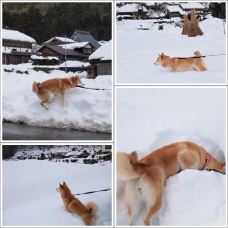 雪に夢中~