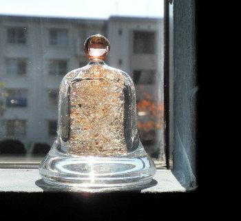 bell_20111224211529.jpg