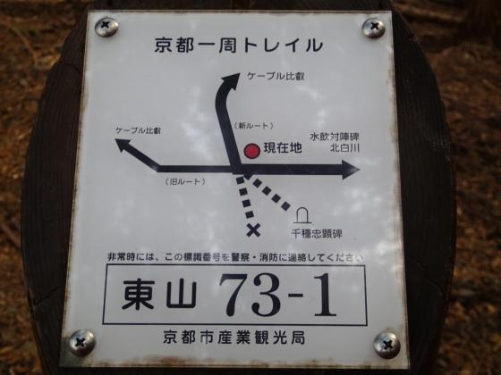 131120-1043a.jpg