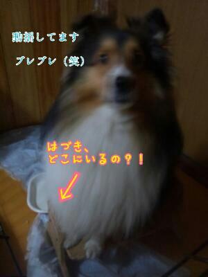 fc2_2013-11-22_21-25-04-901.jpg
