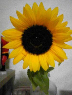 Image060_convert_20100819201659.jpg